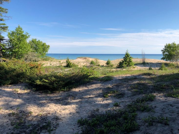 Spectacular 350′ of Lake Michigan Frontage