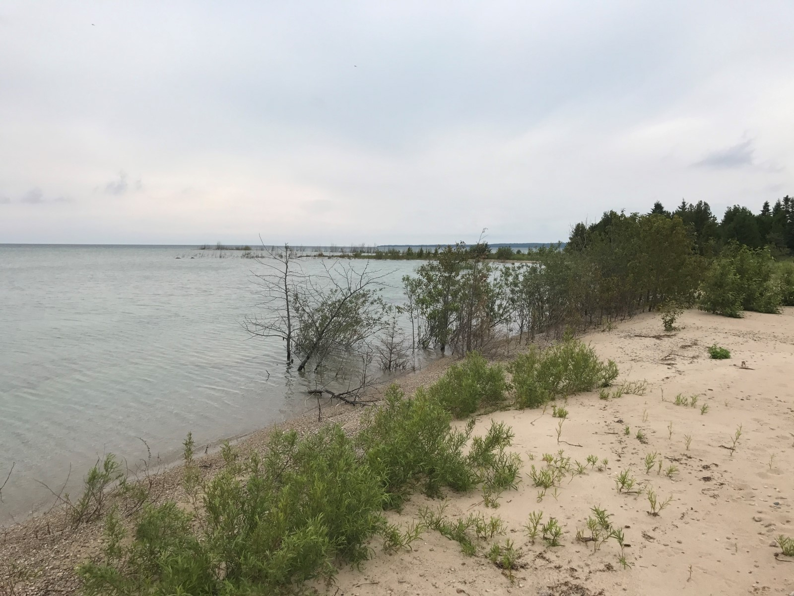 Beaver Island Michigan Land For Sale