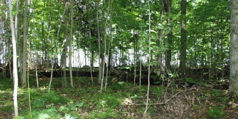 beaver island 179 IMG_9092